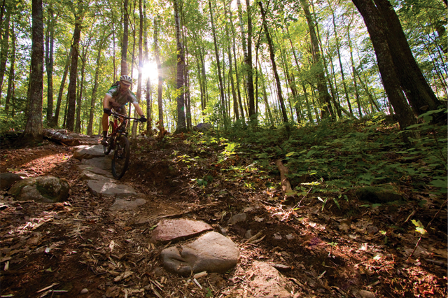 IMBA Trail